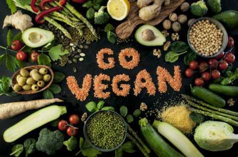 go vegan in food.jpg